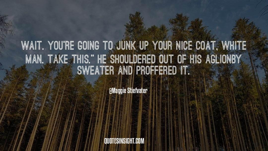 Coat quotes by Maggie Stiefvater
