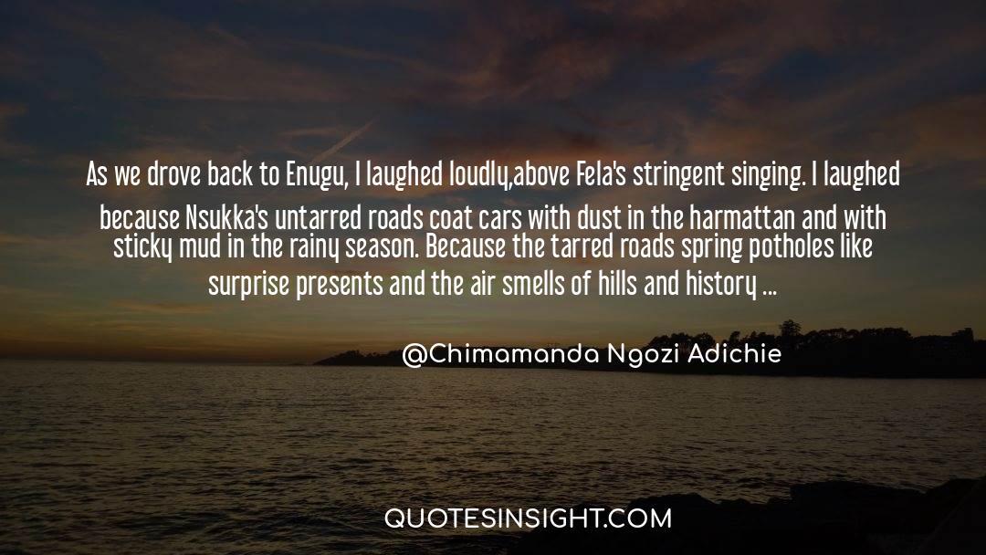 Coat quotes by Chimamanda Ngozi Adichie