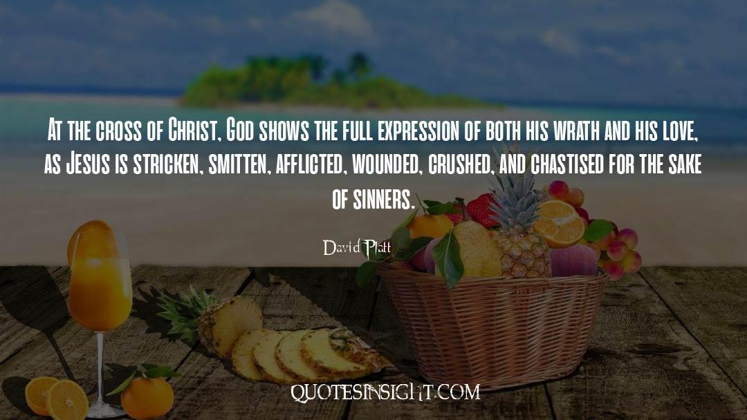 Cross Stitch quotes by David Platt