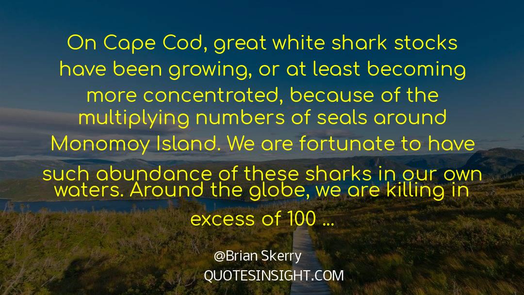Deserted Island quotes by Brian Skerry