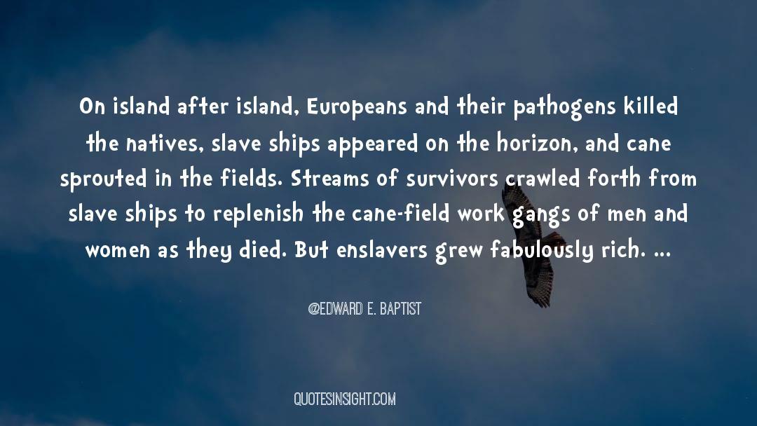 Deserted Island quotes by Edward E. Baptist