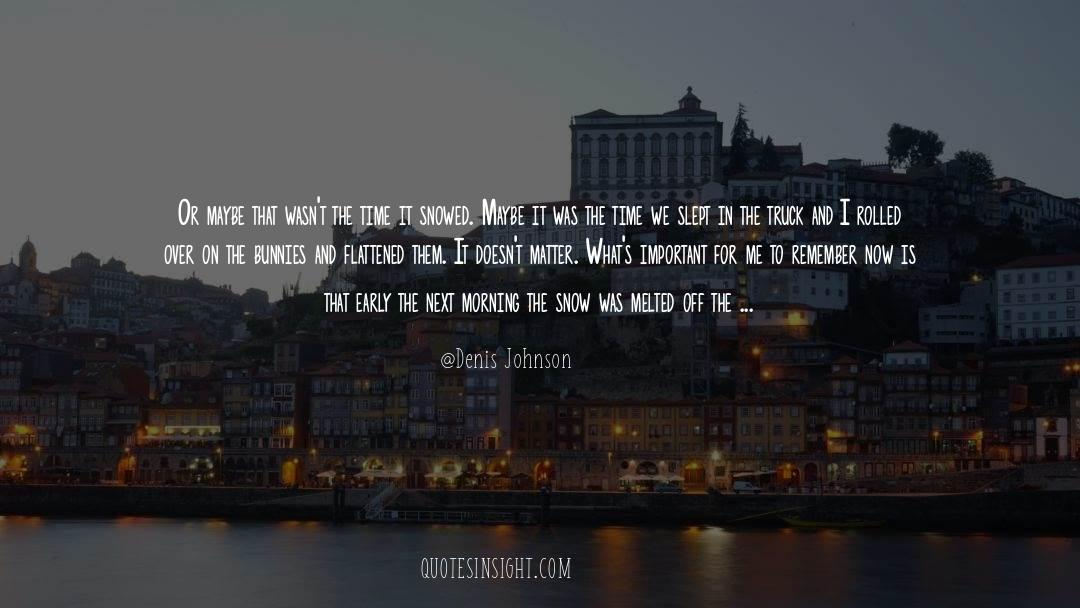 Flattened quotes by Denis Johnson