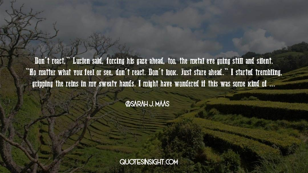 Flattened quotes by Sarah J. Maas