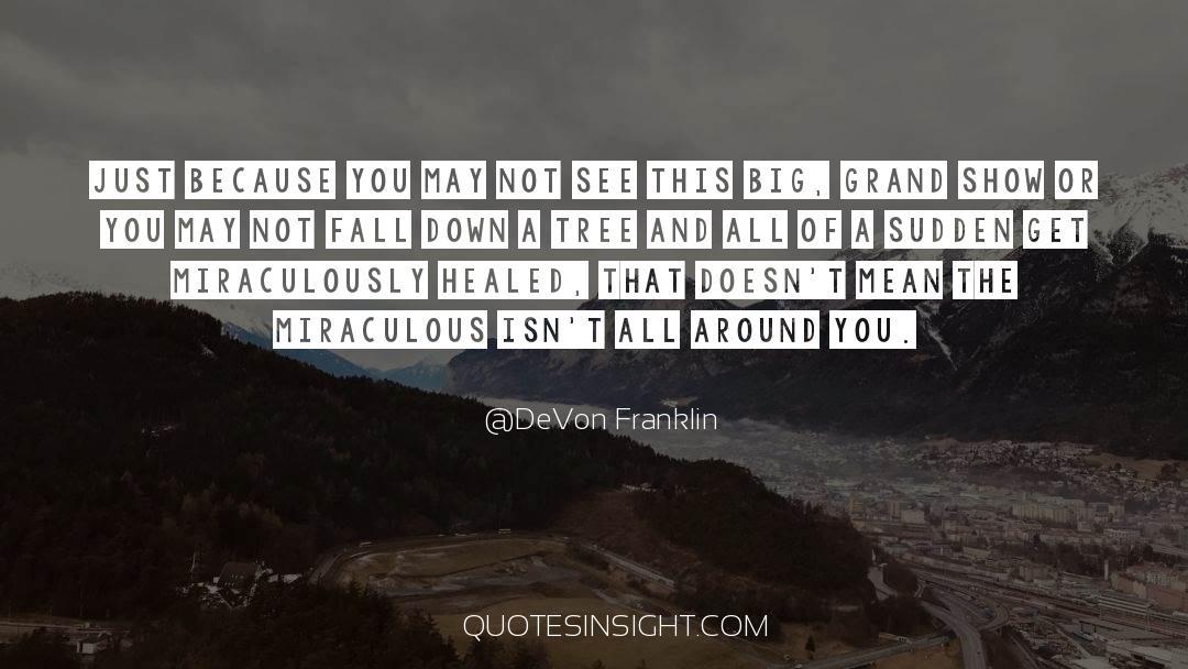 Franklin Roosevelt quotes by DeVon Franklin