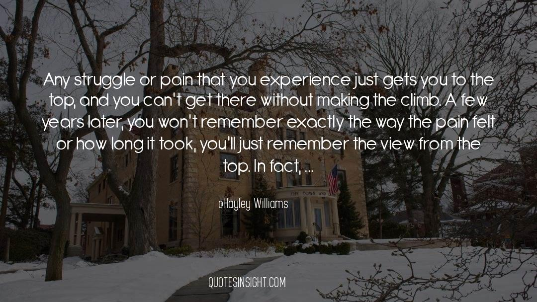 Nineteen Years Later quotes by Hayley Williams