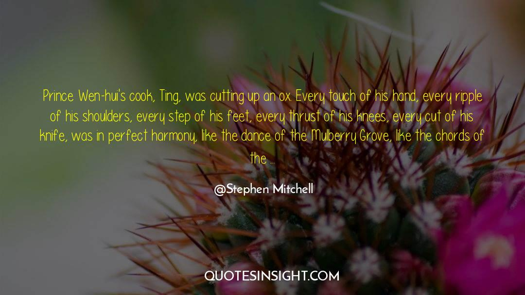 Nineteen Years Later quotes by Stephen Mitchell