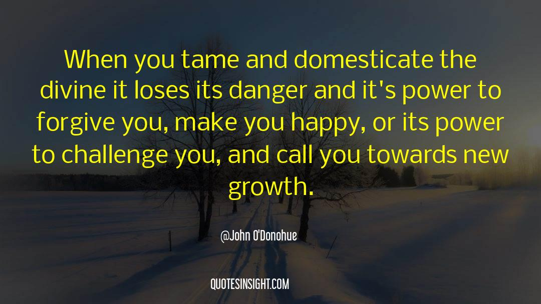 Power To Forgive quotes by John O'Donohue