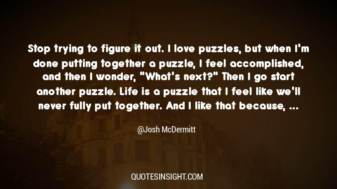 Puzzles quotes by Josh McDermitt