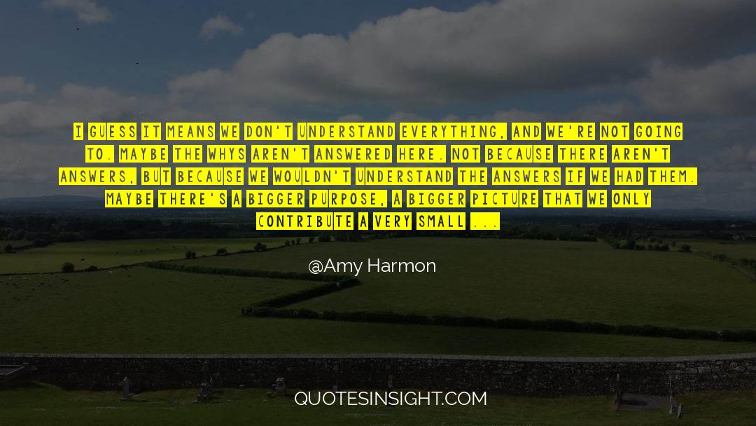 Puzzles quotes by Amy Harmon