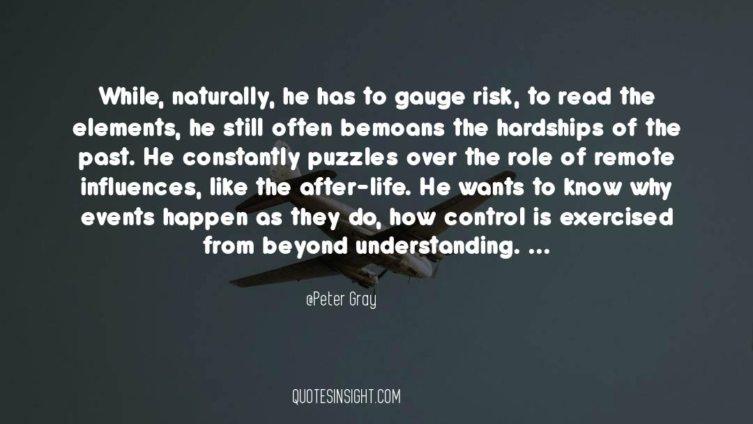 Puzzles quotes by Peter Gray