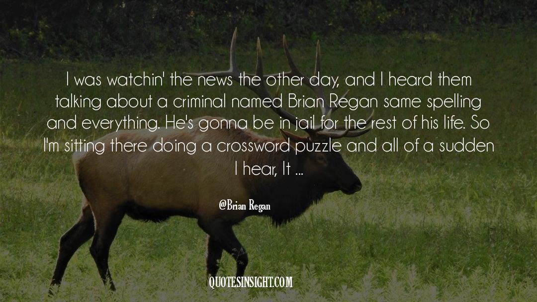 Puzzles quotes by Brian Regan