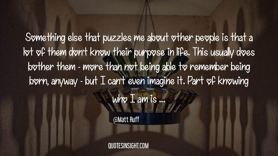 Puzzles quotes by Matt Ruff