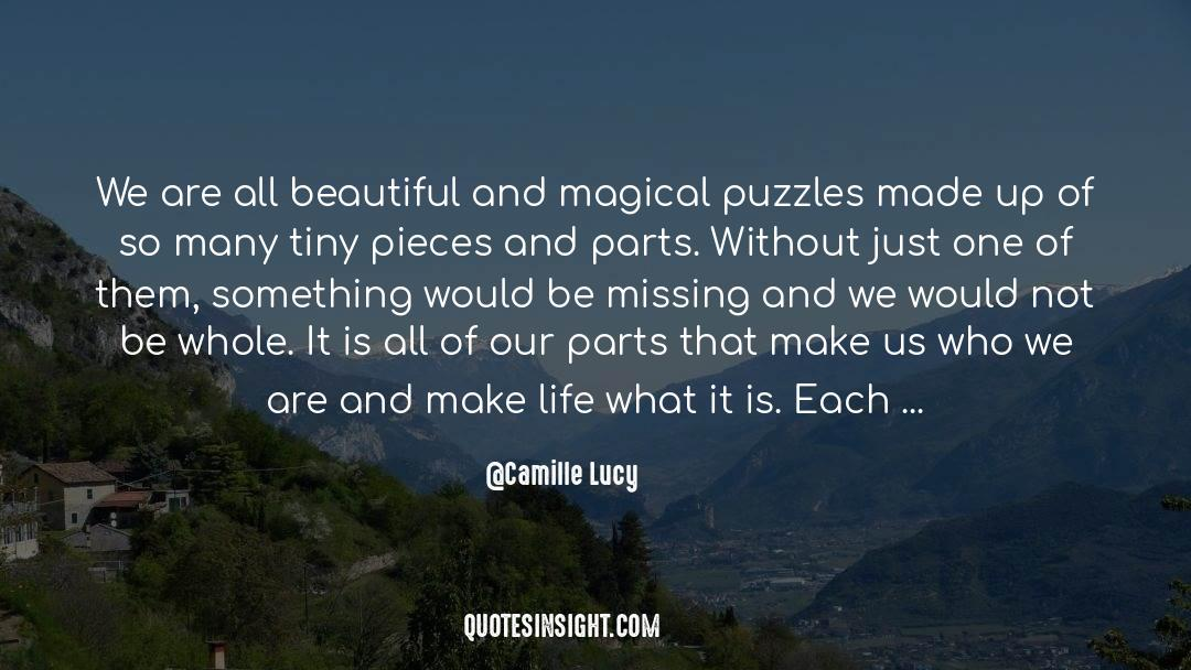 Puzzles quotes by Camille Lucy
