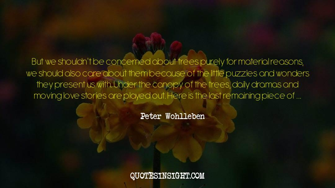 Puzzles quotes by Peter Wohlleben