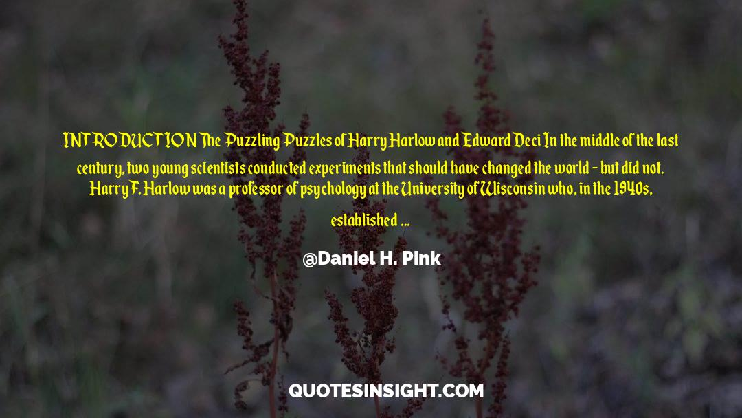 Puzzles quotes by Daniel H. Pink