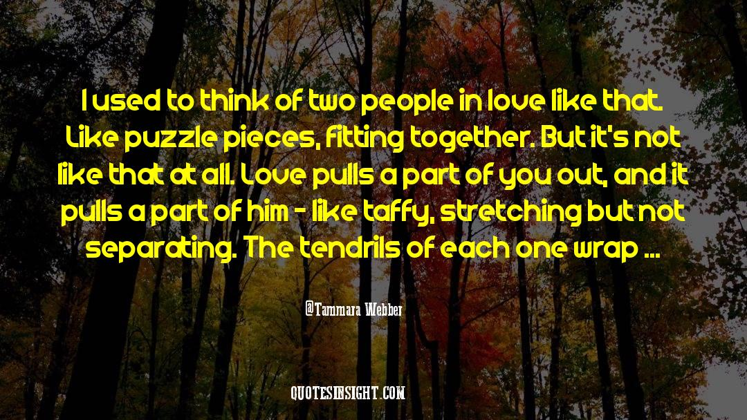 Puzzles quotes by Tammara Webber