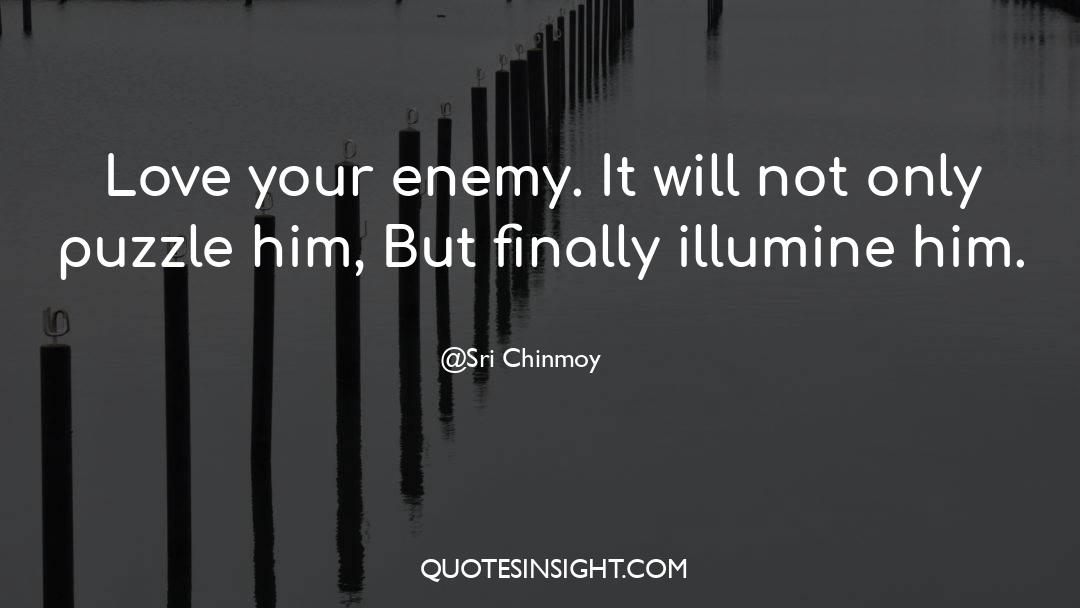 Puzzles quotes by Sri Chinmoy