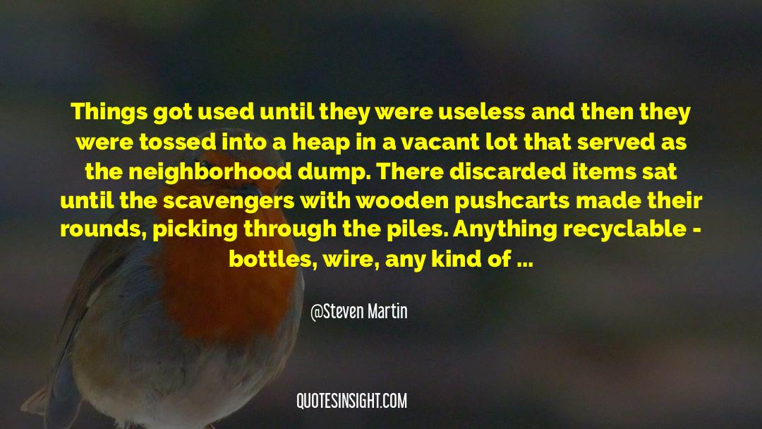 Recycling quotes by Steven Martin