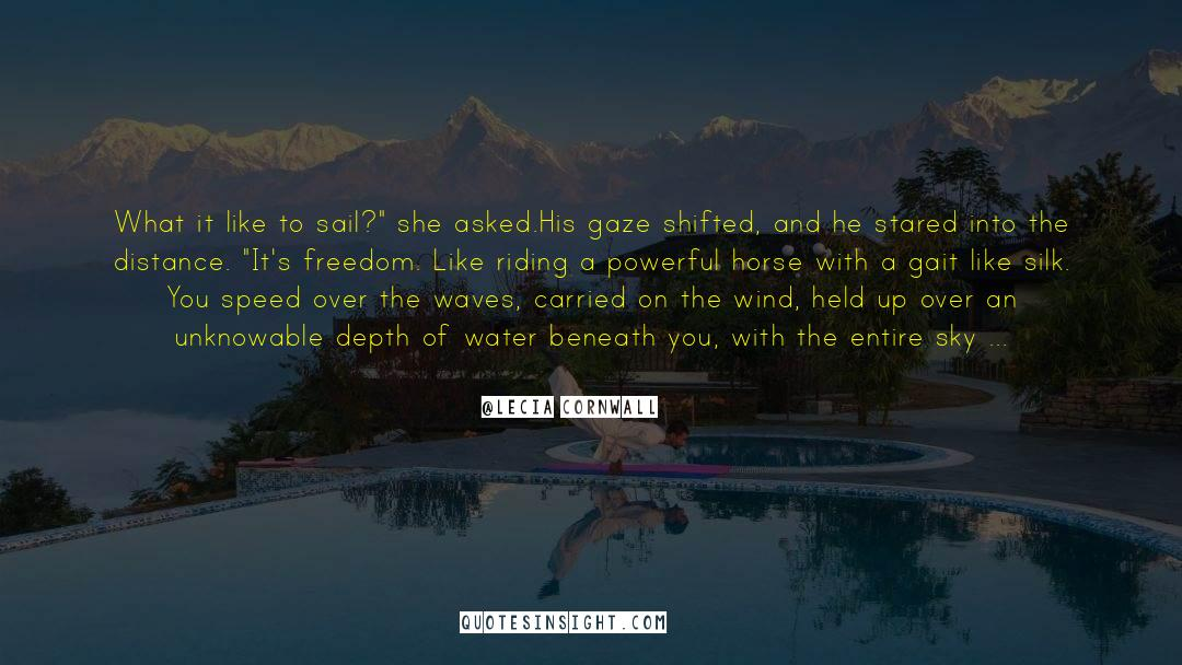 Red Vs Blue quotes by Lecia Cornwall