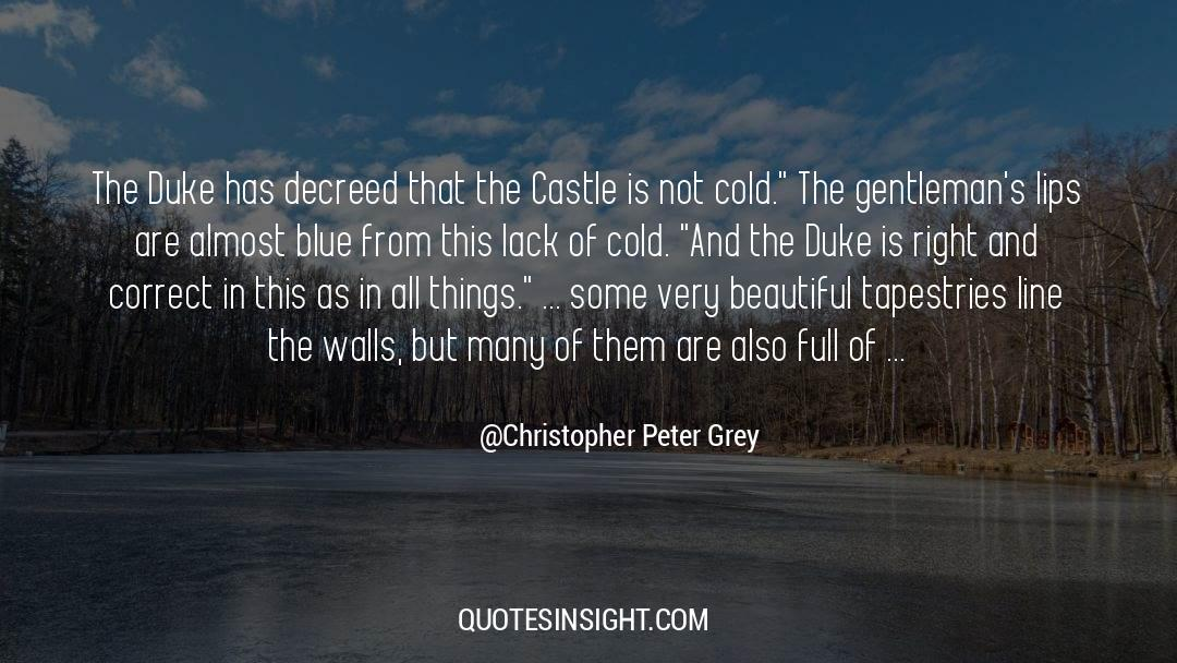 Red Vs Blue quotes by Christopher Peter Grey