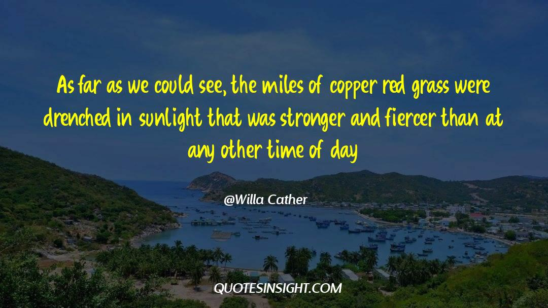 Red Vs Blue quotes by Willa Cather