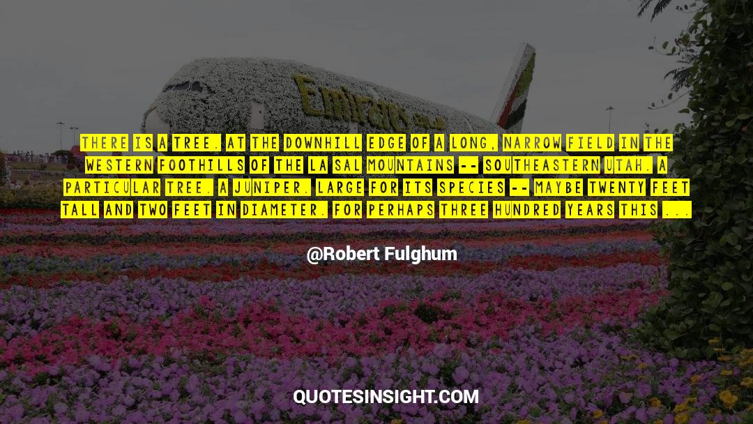 Respect quotes by Robert Fulghum