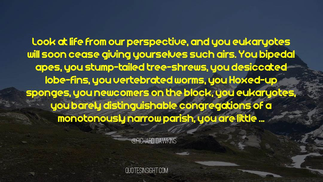 Shrews quotes by Richard Dawkins