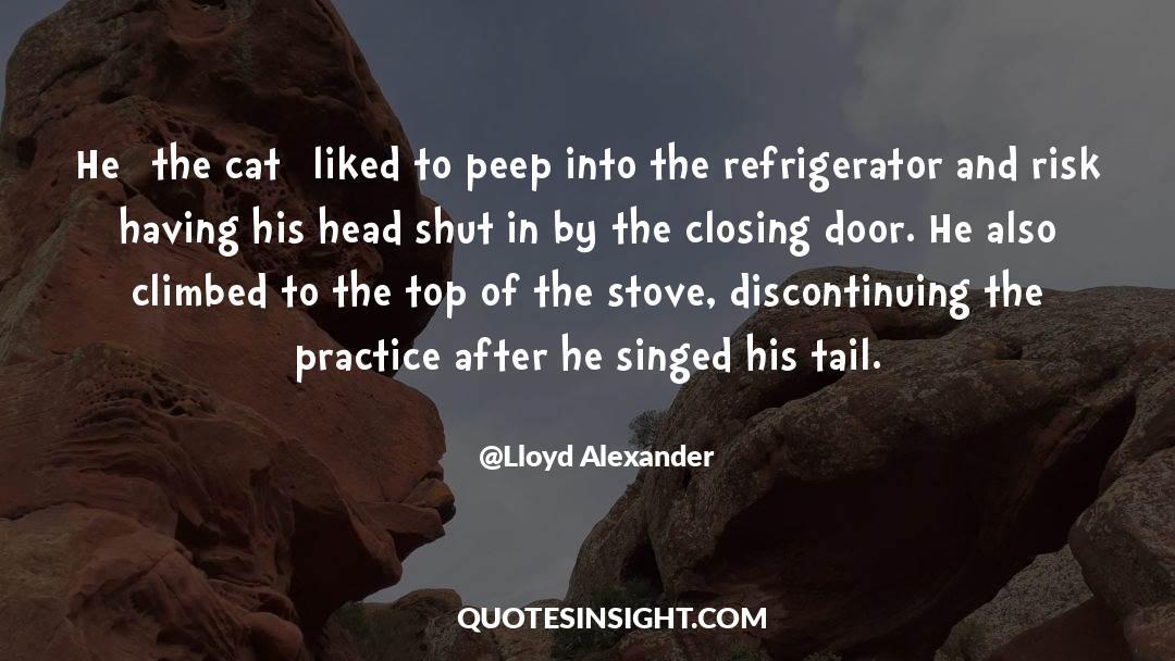 Shut In quotes by Lloyd Alexander