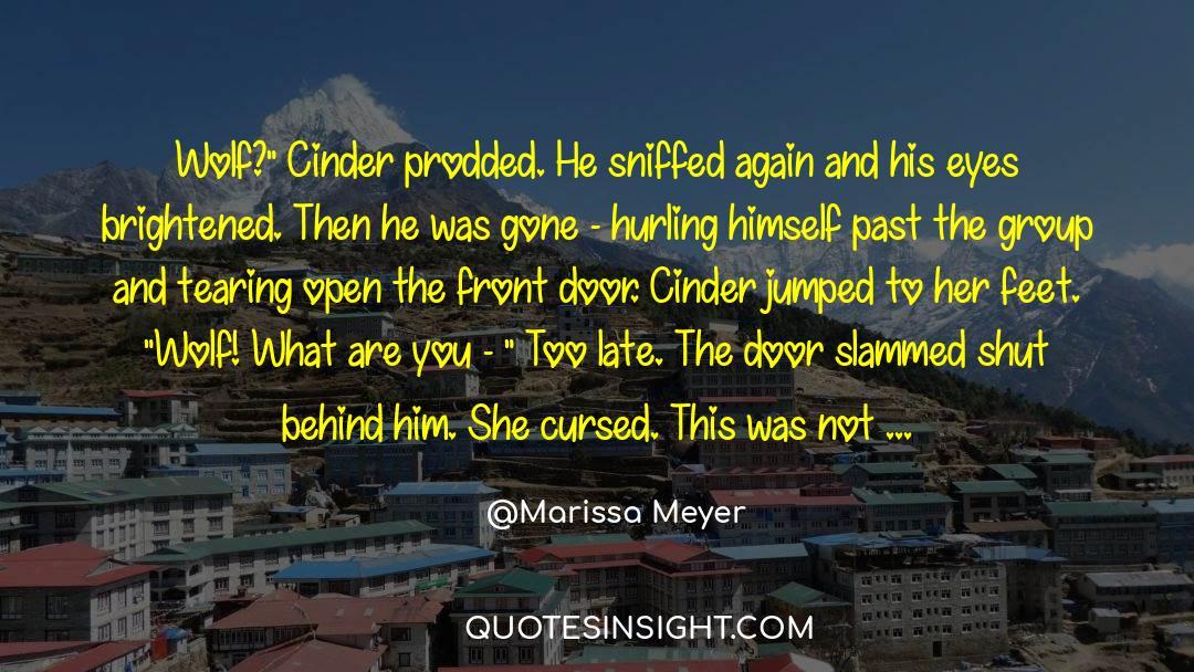 Shut In quotes by Marissa Meyer