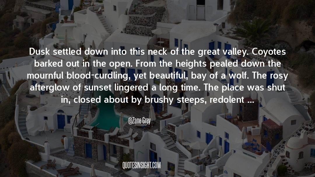 Shut In quotes by Zane Grey