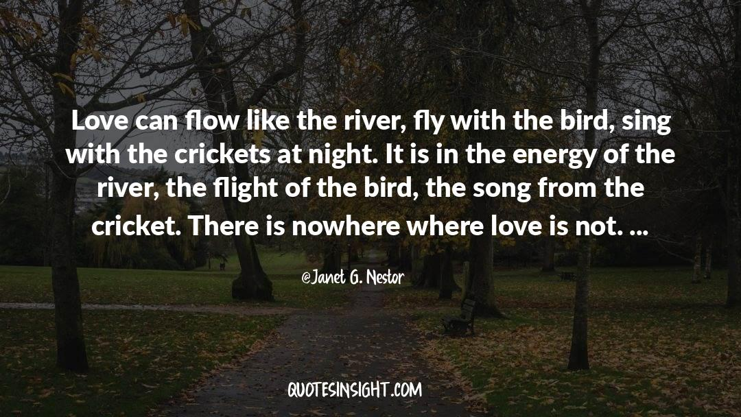 Swim The Fly quotes by Janet G. Nestor
