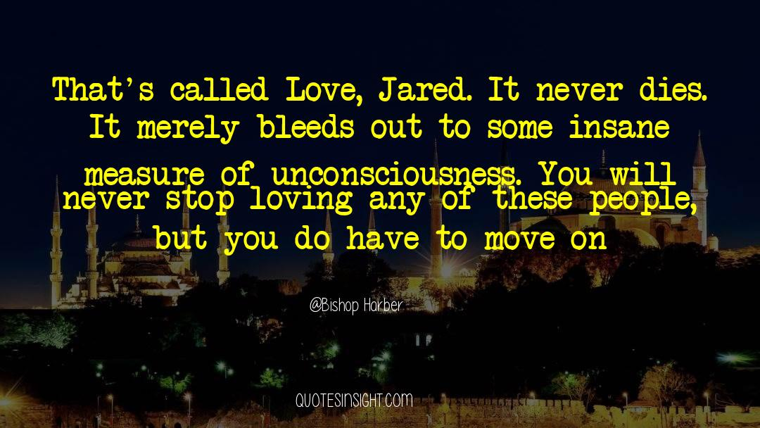 Undivided Love quotes by Bishop Harber